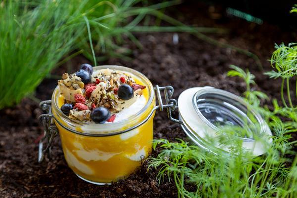 yogurt taller de fermentos online luis garcía theveggielab